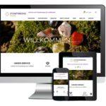 Online Shop - Steinparadies Laufen
